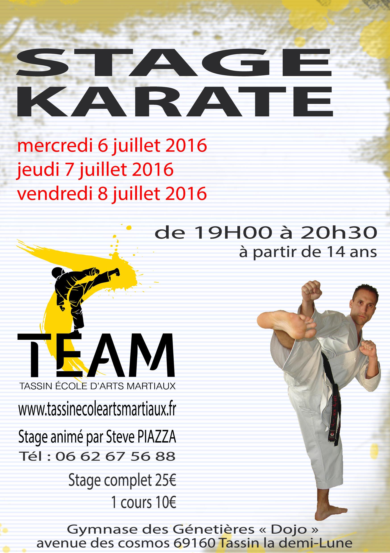Stage de Karaté juillet 2016