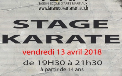 Stage Karaté Tassin le 13 avril 2018