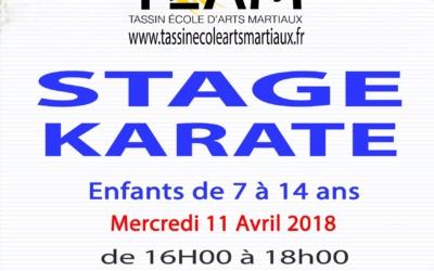 Stage Jeunes de Karaté 11 avril 2018