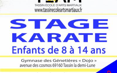 Stage karaté enfants